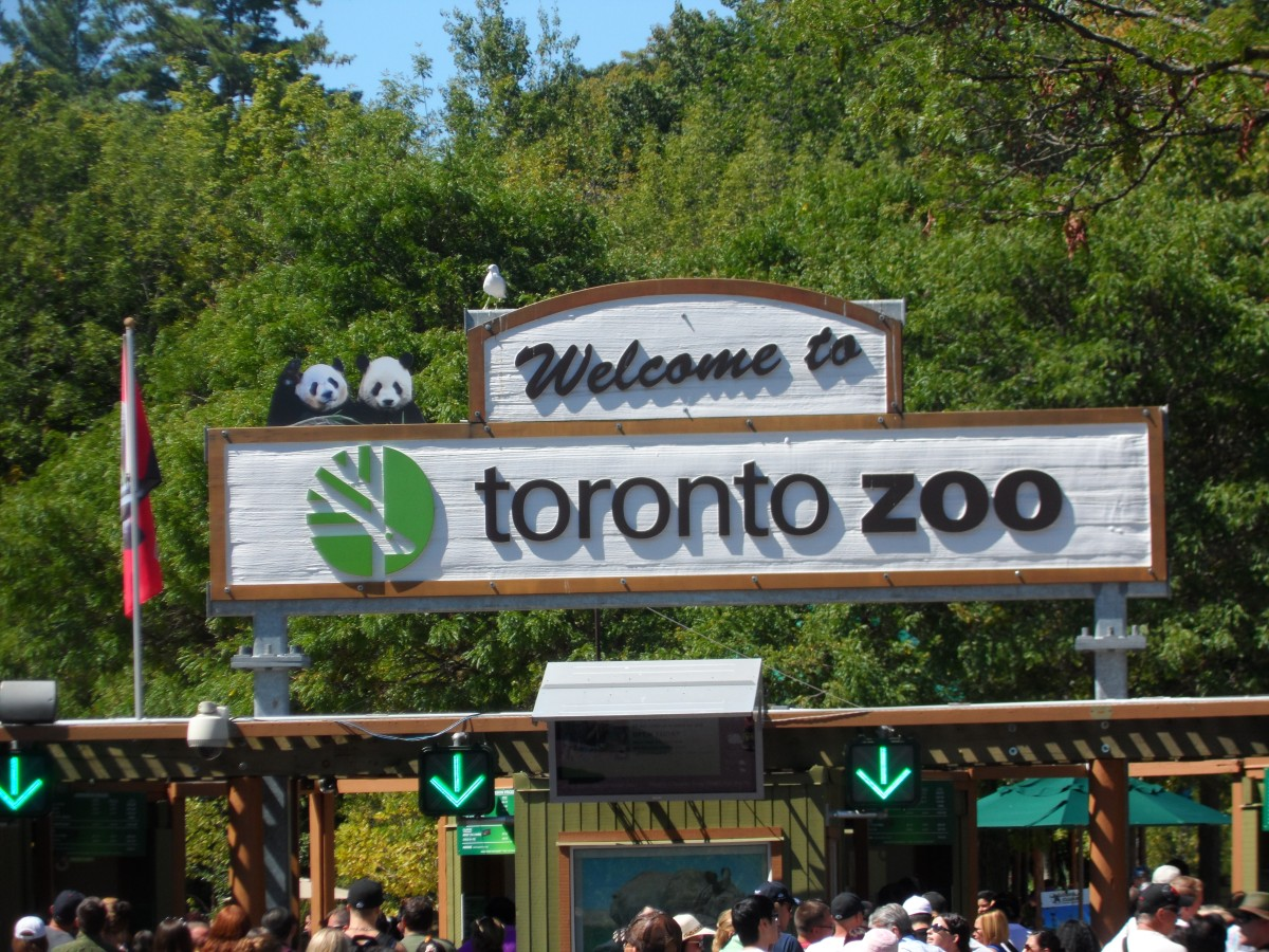 trip to the zoo We absolutely love going to the zoo to create this printable zoo scavenger hunt i printed each of the boys their own copy, gave them a clipboard as well as a marker, and off we went great idea we have planned a field trip to zoo.